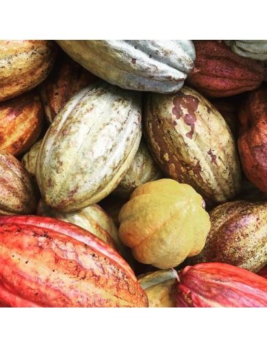 Tablette de chocolat Paradis- Made in Haiti-by ayizana - haiti